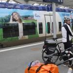 Hübsch beklebter Zug durch die Champagne nach Reims
