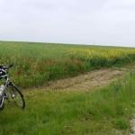 Von Sven nicht gern gesehen Offroad-Wege. Dank Unplattbar-Fahrradmänteln eigentlich kein Problem, aber die Durchschnittsgeschwindigkeit leidet erheblich.